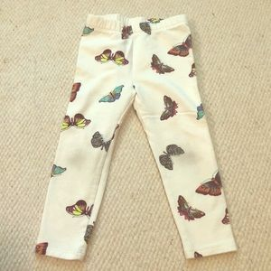 GAP Bottoms - BabyGap butterfly leggings!
